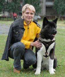 Akita walking dog harness Siberian Husky