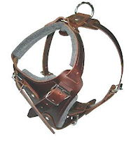 agitation, protection, attack dog harness