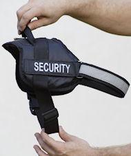 patrol nylon dog harness with handle