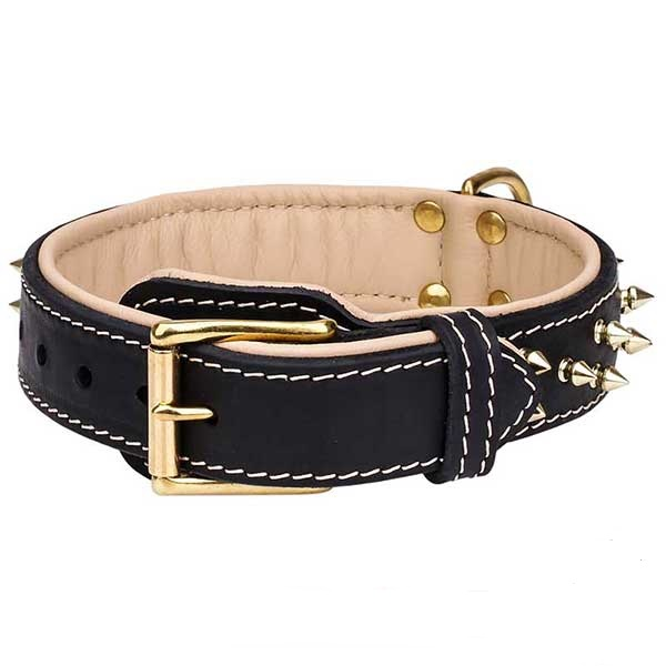 Durable brass buckle of leather dog collar