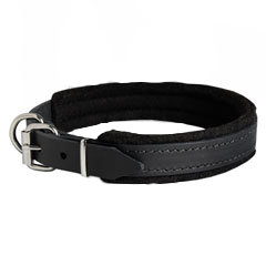 1 inch wide leather collar
