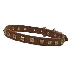 Luxury leather collar