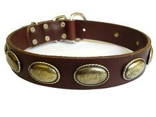 leather dog collar brown color