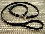 "Adjustable Police / hunting"" dog leash and collar (combo)"