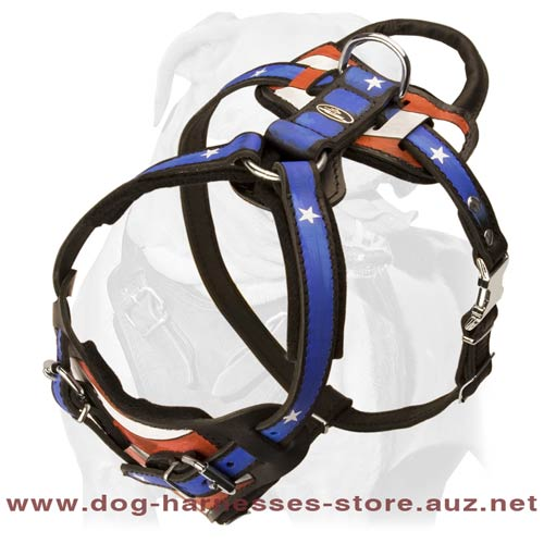 Comfy Leather Dog Harness