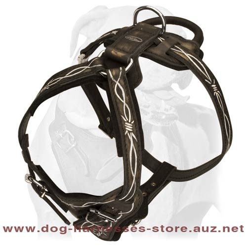 Leather Dog Harness For Intensive Trainings