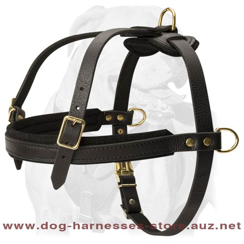 Leather Dog Harness With Thick Felt Padding