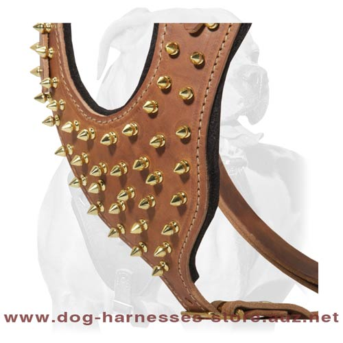 Leather Dog Harness For Active Dogs