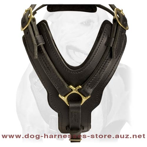 Leather Dog Harness For Intensive Training