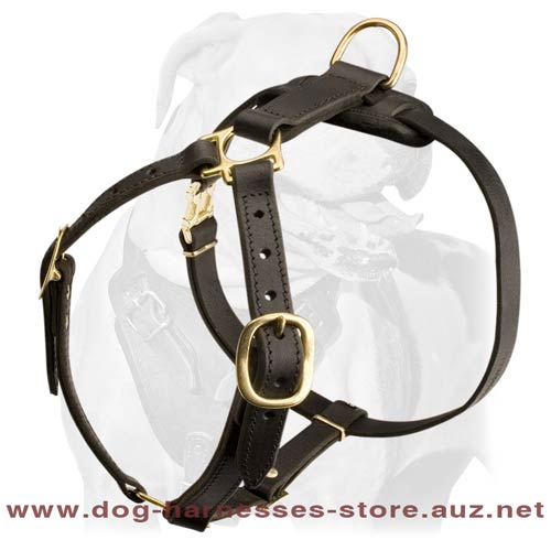 Extra Strong Leather Dog Harness