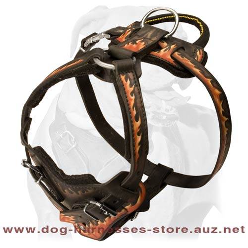 Cool Stylish Leather Dog Harness