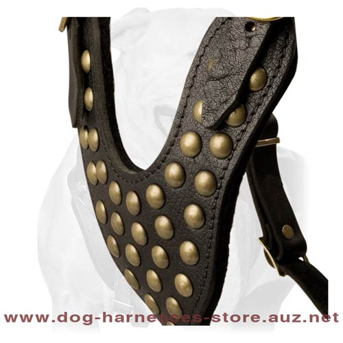 Ultracool Leather Dog Harness