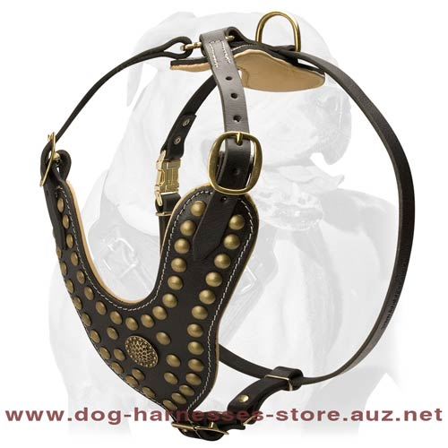 Leather Dog Harness For Sport Activities