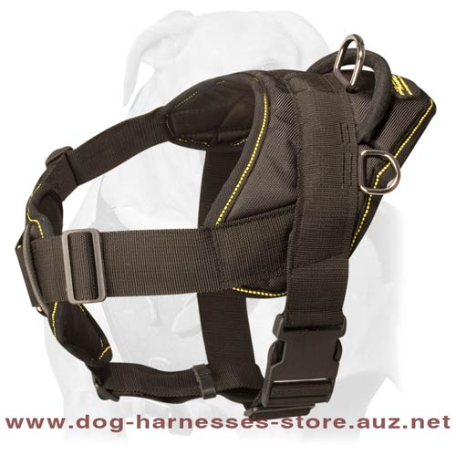Safe Leather Dog Harness