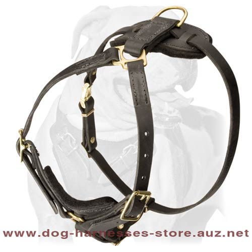 Leather Dog Harness For Obedience Training