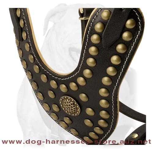 Strong Leather Dog Harness