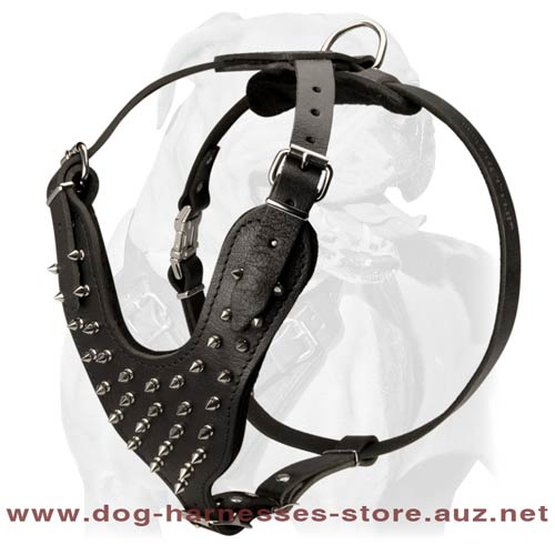 Strong Leather Harness For Attack Training