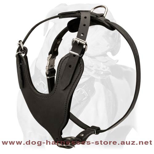 Superb Leather Dog Harness