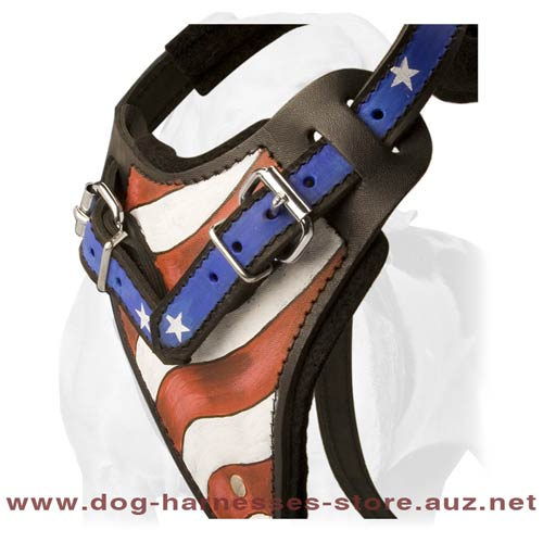 Leather Dog Harness For True American Patriots