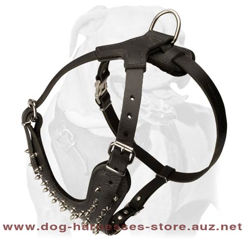 Leather Dog Harness For True Champions