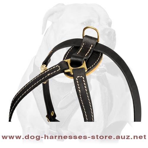 Unusual Leather Puppy Harness