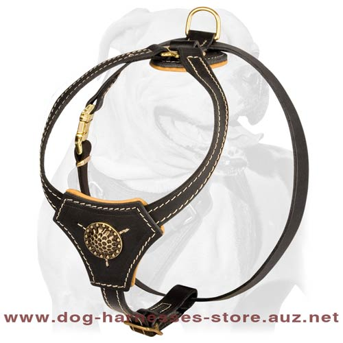Leather Puppy Harness For Your Champion