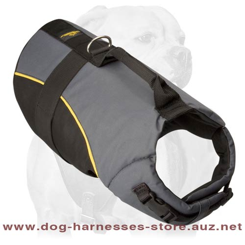 Nylon Harness For Active Dogs