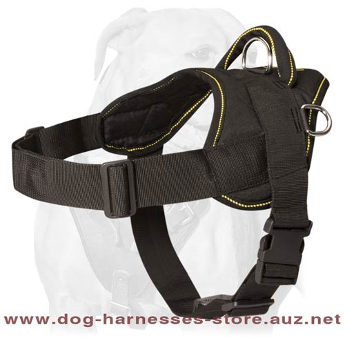 Adjustable Nylon dog harness with handle for Australian Cattle Dog