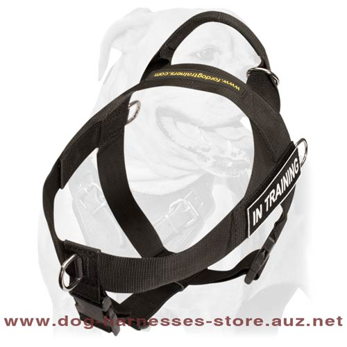 Fair Nylon Dog Harness