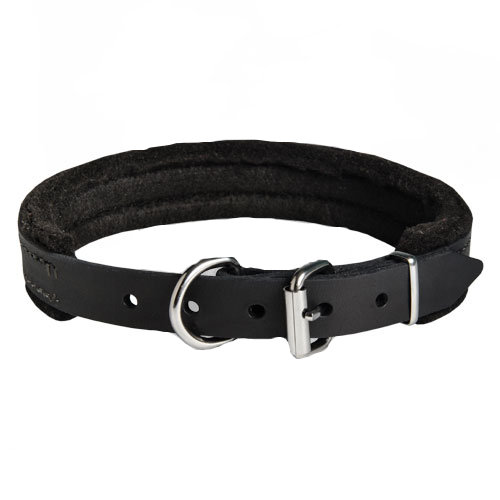 Padded Leather Collar for Dog Attack Training