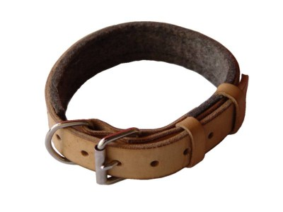 Padded Leather dog collar with thick felt for dog training or for dog owners