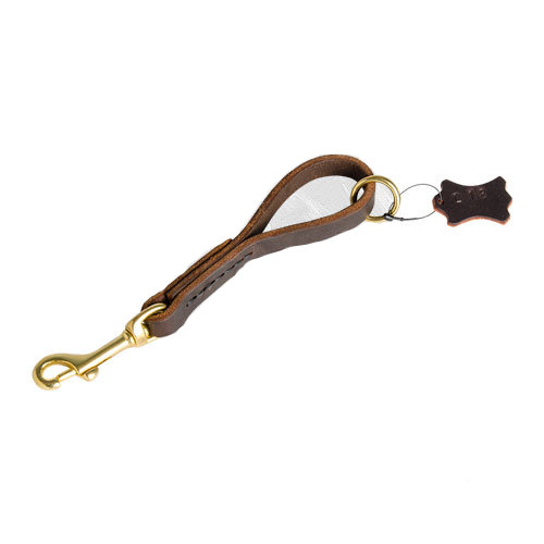 Leather leash with brass fittings