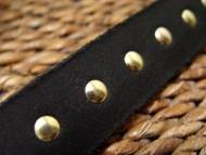 leather-spiked-dog-collar-closeup