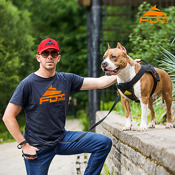 Men T-shirt of Quality Cotton with Pro Logo for Dog Training