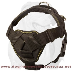 Nylon Dog Harness For Rainy Weather
