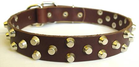 best leather dog collar for gsd